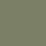 Painting the Past Eggshell Finish Cottage Green (NN53)